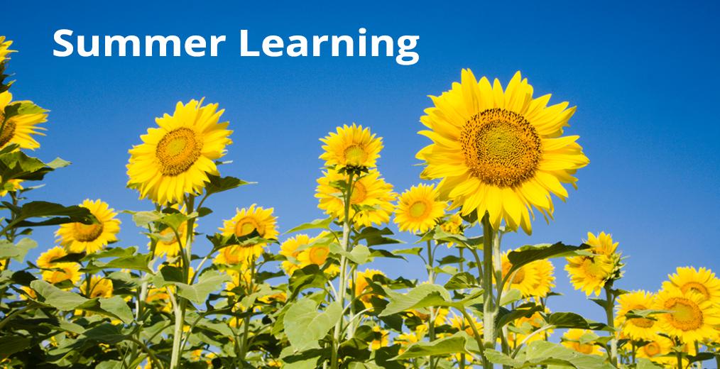 Summer Learning || Aprende en Verano